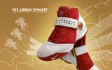 Nike Zoom LeBron V (China Edition)