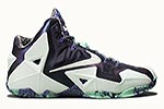 Nike Lebron XI All Star/ Gator King