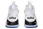 Nike Lebron Soldier 11 Court General